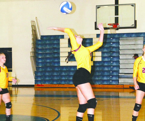 Lady Raiders set to serve up the wins