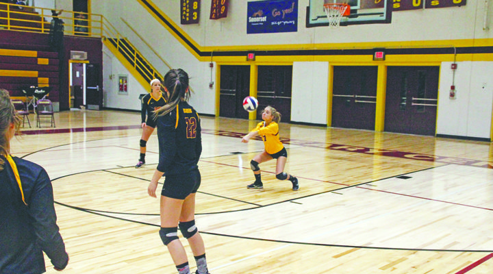 Volleyball drops District game