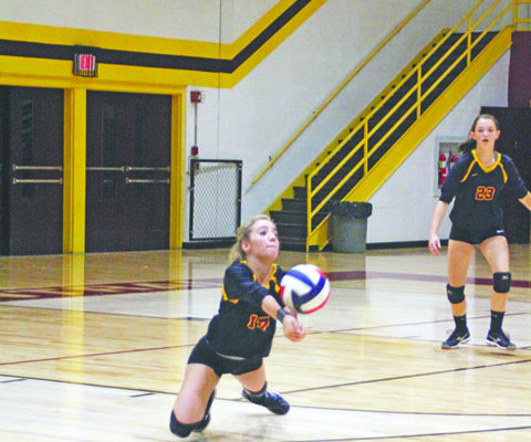 Volleyball tops Bell