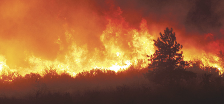Out of control wildfire – It could have been us
